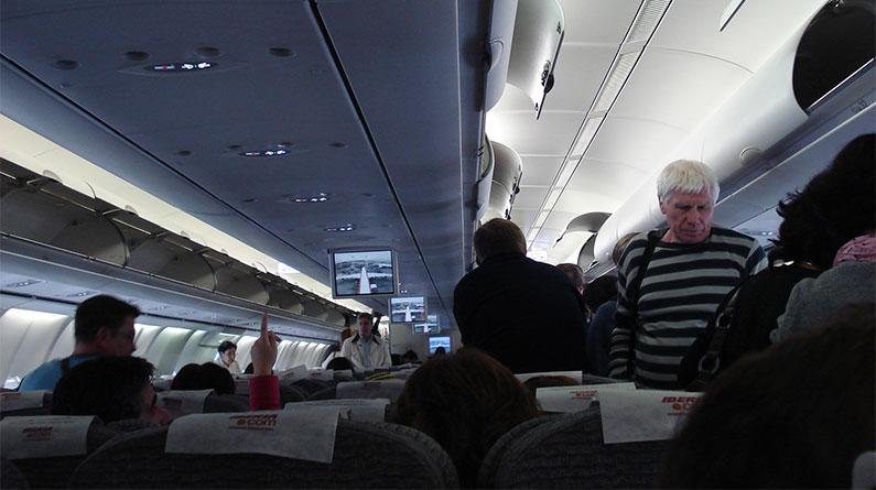 Compañeros de vuelo